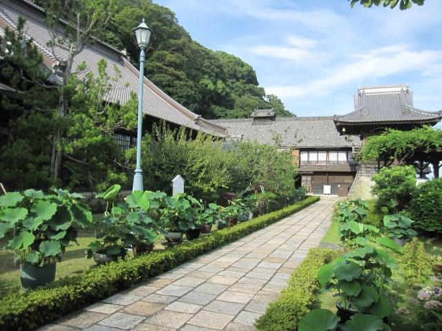 足利将軍や徳川家康公とも縁の深いお寺です。