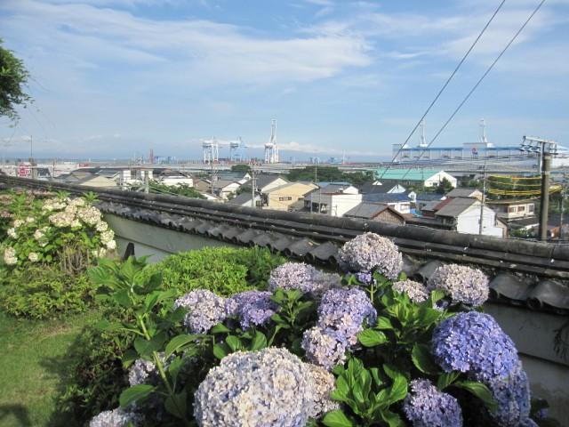 你可以向下俯瞰骏河湾和美穗-不-松原。